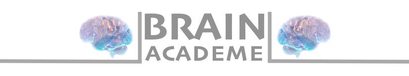 Brain Academe